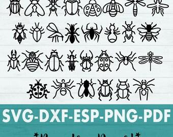 Bug svg - Insect Svg - Bug Cut File - Spring Svg - Bee svg - Ladybug svg - Dragonfly svg - Beetle svg - Svg Bundle - Spider svg