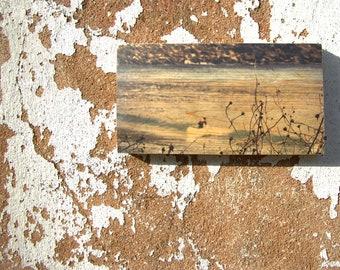 Wooden Print - Summer Surf | Wood | Print | Wall Art | Wall Decor | Abstract art prints | Natural Prints