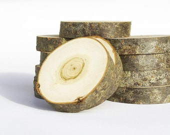 Bird cherry wood slices, Set of 10 slices, Hardwood slices with bark, Tree slices, Very Cheap option