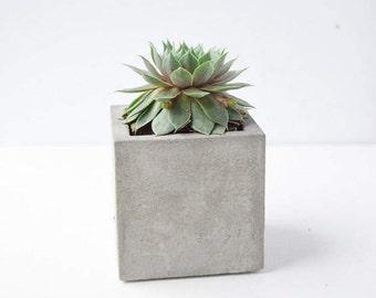 Small Concrete Cube - Concrete Planter - Succulent Planter