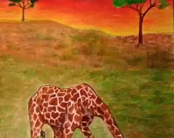 Giraffe in Water