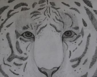 Custom made drawing of animal