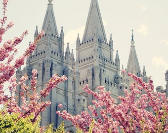 Salt Lake Temple in Spring