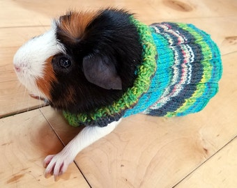 Guinea Pig Sweater - Ready To Ship!