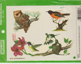 Vintage assorted bird Decoupage Arts and Crafts Project  water applied decal Meyercord Companyowls,humming,bird,robin,pine,red flower,nature