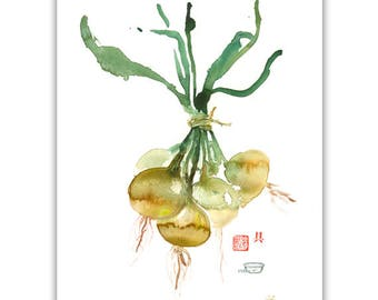 Onion poster, Watercolor painting, Kitchen wall decor, Vegetable print, Botanical poster, Food artwork, Mustard wall art, Garden lover gift