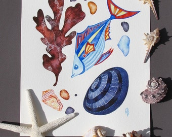 "Fish Painting/ Kelp, Sea shell/ Watercolor ORIGINAL Painting/ Nautical Art 8""x10""/ Beach House/ Kids Room Decor/ Coastal Art"
