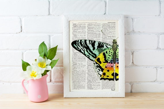 Summer Sale Butterfly Art Print Digital Illustration Poster Print Art Wall Hanging Hand painted Butterfly Dictionary gift BFL102
