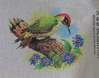 Rare A & S DEIGHTON Bird GREEN WOODPECKER Handpainted Needlepoint Canvas Hand Painted - Bideford North Devon England