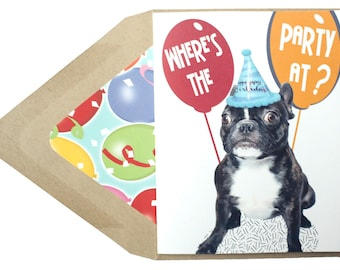 Where's The Party Birthday Card - Birthday, Getting Older, Funny, Quotes, Frenchie, French Bulldog, Dog, Animal, Pet, Photography
