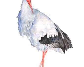 Stork print of watercolor painting, S20617, A4 size, Stork watercolor, Stork painting, stork illustration