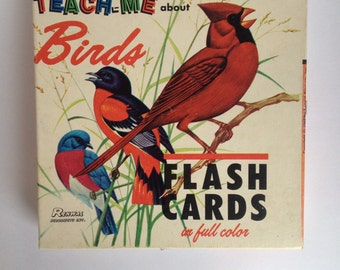 Teach Me About Birds Flashcards Set 1960's