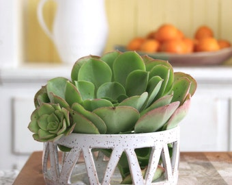 Succulent Planter Dish - Modern Geometric Design - Large Ceramic - Modern Home Decor - READY TO SHIP