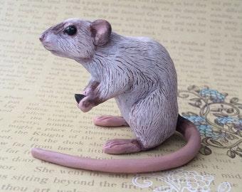 Rat MADE to ORDER Ooak polymer clay sculpture Siamese Dumbo art doll Miniature cute animal figurine Handmade figure