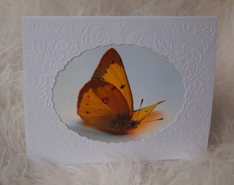 Butterfly Birthday Card, Sympathy Card, All Occasion Card, Note card