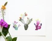 Prickly Pear Cacti 8x10 Art Print - Cactus Plants Giclée Print