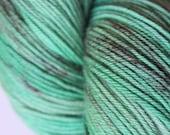 Nouveau Hand Dyed Merino Fingering Sock Yarn | Planted