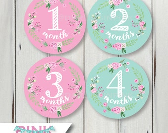 Pink & Mint Green Monthly Baby Milestone Stickers – Floral Wreath Baby Girl Bodysuit Months 1-12, 13-24 Just Born + other colors available