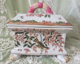Vintage Chinese Porcelain Lidded Cache Pot with Bird, Flowers and Insect Decor with Lion's Paw Feet, Vintage Oriental Porcelain Decor