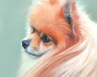 Pom Pom Art, Pomeranian Art, Pomeranian Art Print, Pom Lover Gift, Pomeranian Lover