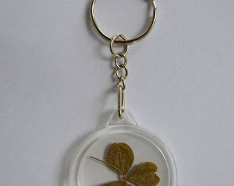 Real 4 Leaf Clover Key ring, Good luck charm
