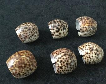 Tortoise shell naprin rings