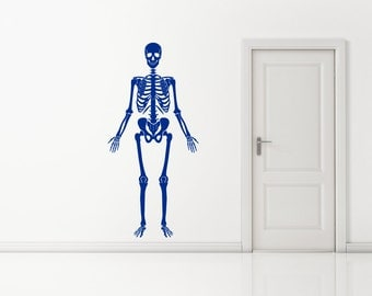 Medical Style skeleton, Human Bones, Can be posed in different positions Wall Sticker Decal Art. Any colour and a choice of sizes.(#162)