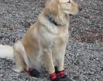 A set of dog boots-winter dog boots-dog shoes-skidproof boots-pawprotectors-new and extreme-dog booties