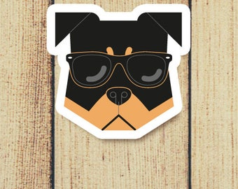 Rottweiler Dog in Sunglasses Vinyl Decal