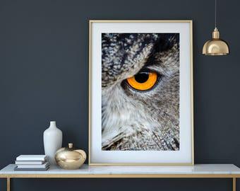 Owl print, owl art, owl, nursery printable, owl art print, bird print, animal print, printable woodland, woodlands animal, nursery wall art