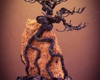 Wire Bonsai #12 - Black deciduous root over rock