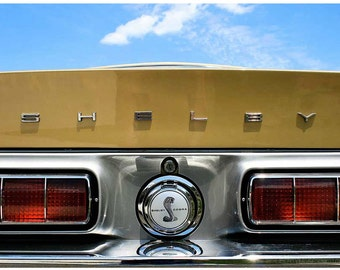 Shelby Cobra Detail Photograph - 8x12 Classic Ford Art Photo - Gold Shelby GT500 Mustang Taillights - Liberty Images Classic Car Photography
