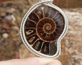 Ammonite Fine Silver Wire Wrapped Pendant