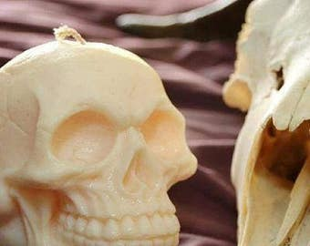 Scented Soy Skull Candle