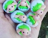 Opal Shell Signature Mini Hatchlings