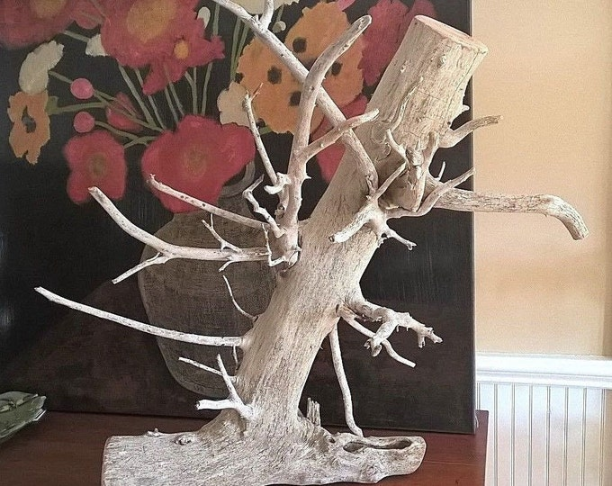 Large Driftwood Root. Natural Rustic Home Decor Wall Hanging Art Sculpture 615