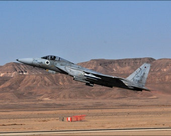 16x24 Poster; Israeli Air Force F-15A Eagle F-15 133Rd Squadron