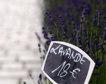 Fine Art Print, French Market Lavender on Rue Cler, Paris Print, Large Wall Art