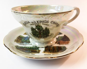 Tea Cup and Saucer Vintage Tea Cup Antique Tea Cup Sequoia National Park Kings Canyon California Sierra Nevada State Art Collectible Plates