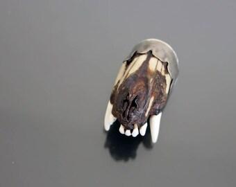 XXL Taxidermy CHARIVARI Pendant. Fox Teeth 900 Silver Jaw Oktoberfest Vintage Hunters Trophy Jewelry.