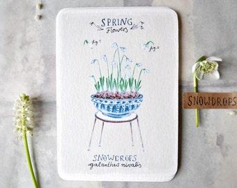 Snowdrops - Card