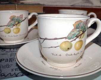 Vintage (c. early 1980s) Noritake Country Diary of an Edwardian Lady tea set (flat cup with saucer). Crab apples, October saying.