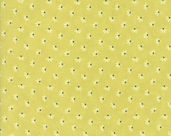 Moda Coney Island Quilt Fabric 1/2 Yard By Fig Tree & Co Limesicle 20283 17