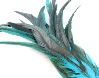 11-13 Inch Rooster Tail Feathers. (5) Long Blue Feathers. Turquoise Blue Bird Feathers. Turquoise Feathers. Rooster Feathers. Long Feathers
