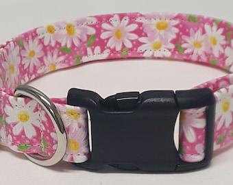 dog collar, pink daisy, daisy, daisies, floral, floral dog collar, floral collar, daisy dog collar, daisy collar, female dog collar