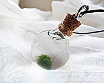 Marimo Necklace Miniature artwork Live Marimo Necklace Marimo Pendant Orb necklace Pendants Living jewelry Gifts for her Marimo terrarium