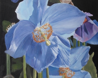 Poppy flowers, oil, floral, green, blue, hyper-realistic nature painting