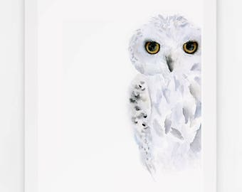 Snowy Owl Watercolor Art Print: Modern owl art print perfect for owl or woodland themed room decor / modern owl watercolor painting