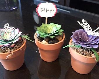 Paper Succulents in Terracotta Pot