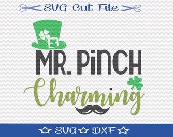 Saint Patricks Day SVG / St Patrick's Day SVG Cut File / St Paddys SVG / Mr Pinch Charming / Little Boy Svg